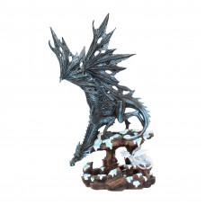 Dragons Wisdom (47cm)